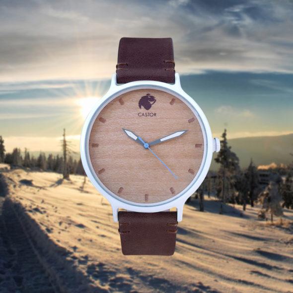 Andes-Relojes-Castor-b2